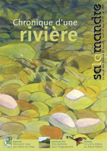 Chronique d'une rivière (N°197)