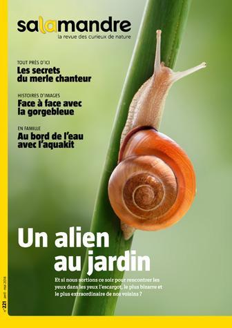 Un alien au jardin (N°221)
