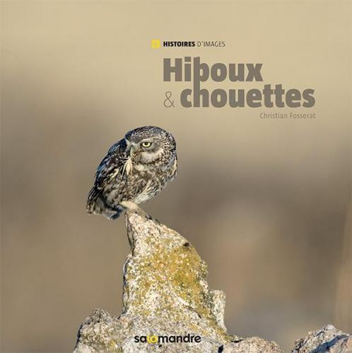 Hiboux et chouettes