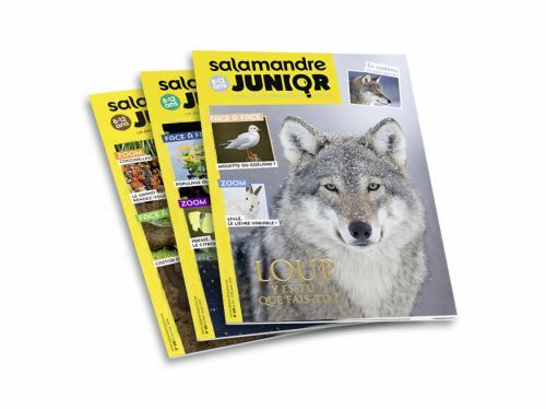 Abonnement découverte à La Salamandre Junior (8-12 ans), 6 mois