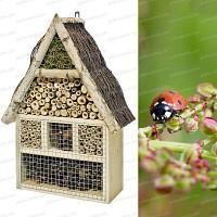 Maison gite à insectes en pin et bouleau