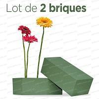 Brique de mousse florale premier prix Lot de 2