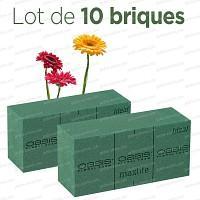 Brique de mousse florale OASIS Lot de 10