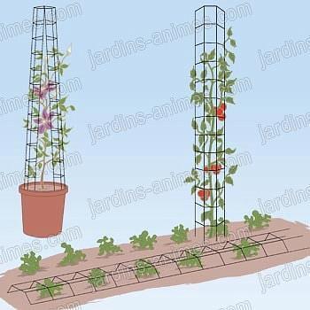 Tuteur tomate universel x2