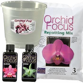 Kit de rempotage Orchidée - pot 15cm