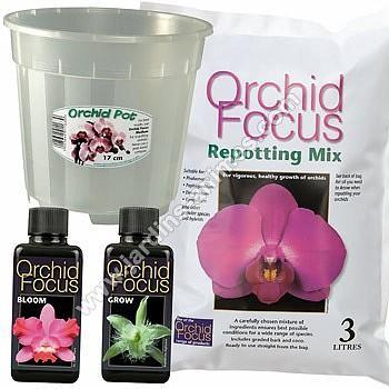 Kit de rempotage Orchidée - pot 17cm