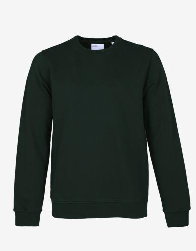 Sweat vert foncé en coton bio - hunter green - Colorful Standard