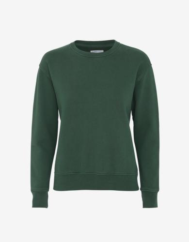 Sweat vert en coton bio - emerald green - Colorful Standard