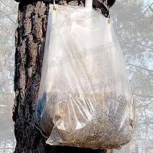 Recharge Ecopiège processionnaire sac mastic