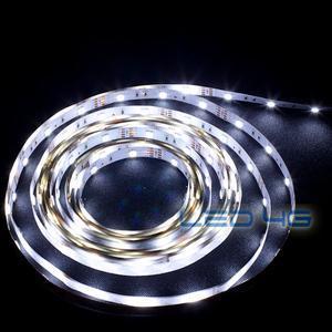 Ruban LED puissant blanc froid en 1 et 5M