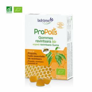 Gommes bio Propolis et Ravintsara 45g