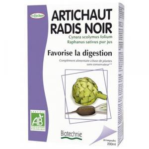 Artichaut Radis Noir