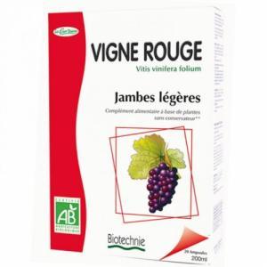 Vigne Rouge Jambes Légères