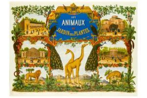 Puzzle en bois Jardin des Plantes 50 pcs