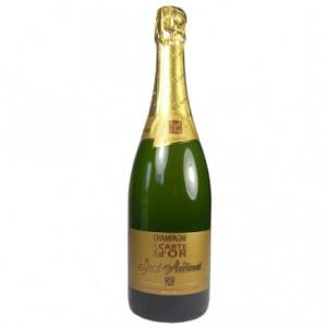 Champagne bio carte d'or José Ardinat 75 cl