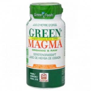 Jus d'herbe d'orge bio Green magma