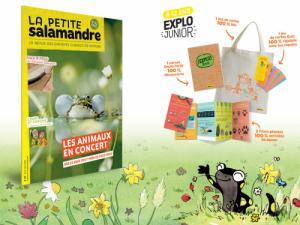 Abonnement à La Petite Salamandre   Trésors, 1 an
