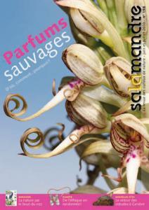 Parfums sauvages (N°198)