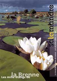Les mille étangs de la Brenne (N°162FR)