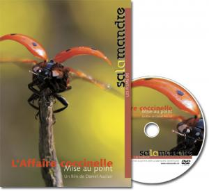 DVD L'affaire coccinelle