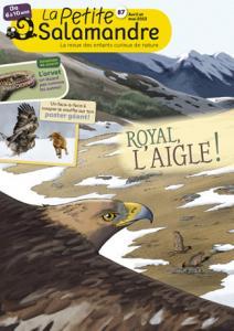 Royal, l'aigle ! (N°87)