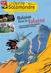 Balaise dans la falaise (N°89)