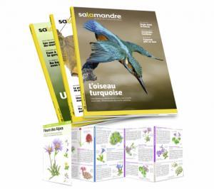 Abonnement découverte à La Salamandre 6 mois