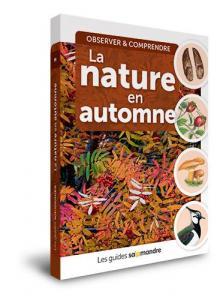 Guide Salamandre: La nature en automne