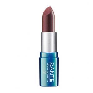 Rouge à lèvres Brown Red N° 10