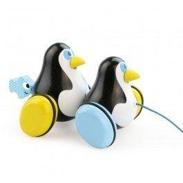 Hans et Knut les pingouins à traîner