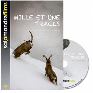 DVD Mille et une traces