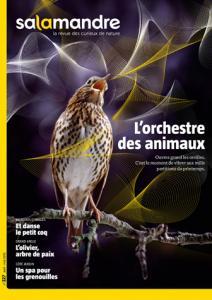 L'orchestre des animaux (N°227)