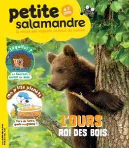 L'ours, roi des bois (n°2)
