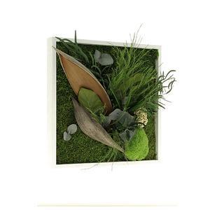 Tableau végétal CARRE 35 x 35