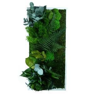 Tableau Végétal Stabilisé RECTANGLE Large 40 x 90