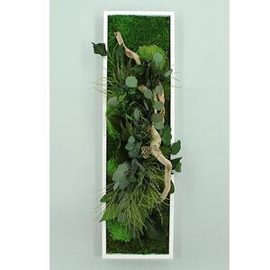 Tableau Végétal Stabilisé PANORAMIQUE 20 x 70