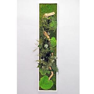 Tableau Végétal Stabilisé PANORAMIQUE Large 115 x 25
