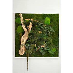 Tableau végétal CARRE XL 80 x 80