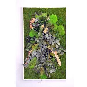 Tableau Végétal Stabilisé RECTANGLE XL 60 x 100