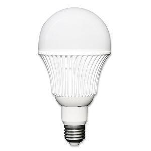 Ampoule 12-24 V 12W E27 - Eclairage naturel
