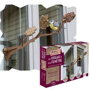 Kit un oiseaux à ma fenêtre graines de découverte - jeux éveil
