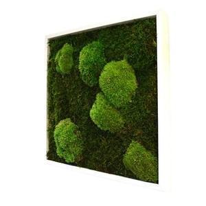 Tableau mousse stabilisé Nature Carré Basic 35x35 - NATALYS