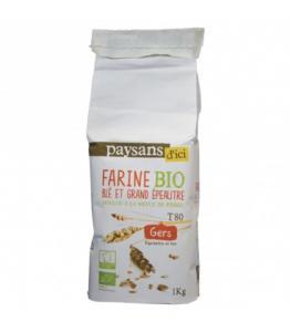 Farine de Blé et Grand Épeautre T80 bio - équitable