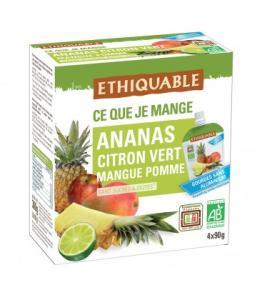 Purée Ananas, Citron vert, Mangue, Pomme bio - équitable en gourde