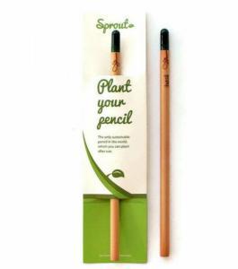 Crayon Lavande
