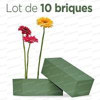 Brique de mousse florale premier prix Lot de 10