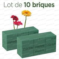 Brique de mousse florale OASIS Lot de 10