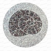 Pas Japonais en Granit Ammonite