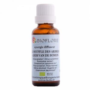 Mélange huiles essentielles à diffuser  - Le Souffle des Arbres 30ml