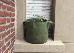 Pot en géotextile vert 16L Root Pouch